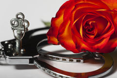 Handcuffs. Closeup of handcuffs with a rose Stock Photography