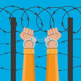 Handcuffs on hands and barbed wire vector illustration