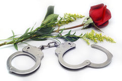 Handcuffs and Rose. In white background Stock Photo