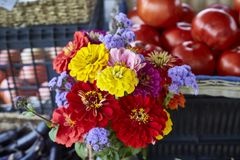 A bouquet of fresh cut flowers at a farm stand in New Jersey. royalty free stock image