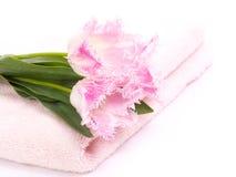 Handdoek en tulpen Stock Foto