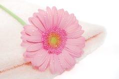 Handdoek met bloem Stock Foto