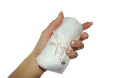 Handdoek ter beschikking Royalty-vrije Stock Afbeelding