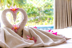 Handdoekdecoratie in hotelruimte, handdoekvogels, zwanen, ruimteinterio Royalty-vrije Stock Afbeeldingen