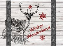 Handdrawing Winter Wonderland Christmas Reindeer. On wooden board textrue background, celebrate the holiday Stock Photography