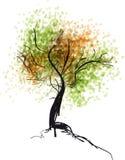 Handdrawn δέντρο φθινοπώρου ζωηρόχρωμη απεικόνιση Στοκ φωτογραφίες με δικαίωμα ελεύθερης χρήσης