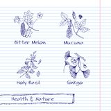 Handdrawn иллюстрация - комплект здоровья и природы Стоковые Изображения RF