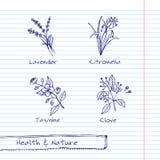 Handdrawn иллюстрация - комплект здоровья и природы Стоковая Фотография RF