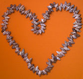 handdrawn раковины сердца изолированные иллюстрацией Стоковое фото RF
