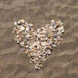 handdrawn раковины сердца изолированные иллюстрацией Стоковые Изображения RF