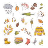 Handdrawn autumn design. Vector handdrawn autumn elements isolated on white background. Vector illustration Royalty Free Stock Photo