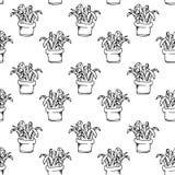 Handdrawn domowa roślina w garnka wzoru doodle ikonie Ręka rysujący bla ilustracja wektor