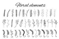 Handdrawn floral  logo elements Royalty Free Stock Photo
