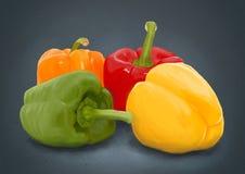 Handdrawn freshness paprika over grey stock images