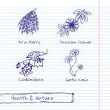 Handdrawn Illustratie - Gezondheid en Aardreeks Royalty-vrije Stock Foto