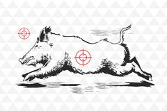 Handdrawn Illustration des Vektors des wilden Ebers Stockfotografie