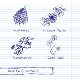 Handdrawn Illustration - Gesundheits-und Natur-Satz Lizenzfreies Stockfoto