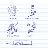 Handdrawn Illustration - Health and Nature Set Stock Image