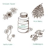 Handdrawn Illustration - Health and Nature Set Stock Photography