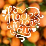 Handdrawn kalligrafische uitdrukking ` heeft een aardige dag ` Royalty-vrije Stock Afbeeldingen