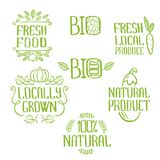 Handdrawn lettering isolated elements. Unique design for ads, signboards, packaging and identity and web designs. Fresh food, locally grown, 100% bio, fresh Royalty Free Illustration