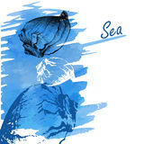 Handdrawn seashells on a watercolor sea backgroun Royalty Free Stock Photos