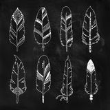 Handdrawn set of feathers Royalty Free Stock Photos