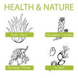 Handdrawn Set - Health and Nature. Collection of Royalty Free Stock Images