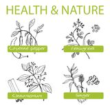 Handdrawn Set - Health and Nature. Collection of Royalty Free Stock Image