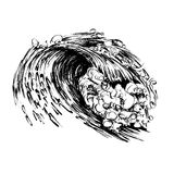 Handdrawn Siebdruckdruck der Wellenbürstentintenskizze Stockfotografie