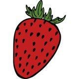 Handdrawn srawberry illustration stock illustration