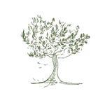 Handdrawn träd Royaltyfri Bild
