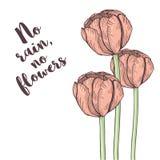Handdrawn tulpenkaart Pastelkleur tedere kleuren Vector illustratie Stock Afbeelding