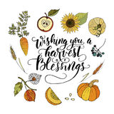 Handdrawn unique autumn card with brush lettering quote. Wishing you a harvest of blessings. Handdrawn unique autumn card with brush lettering quote. Vector Stock Images