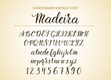 Handdrawn Vector Script font.  Brush style textured calligraphy cursive typeface. Royalty Free Stock Photography