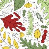 Handdrawn wektorowa ilustracja z liśćmi na białym tle ilustracji