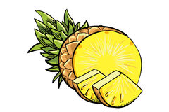 Handdrawn yellow pineapple Royalty Free Stock Photos