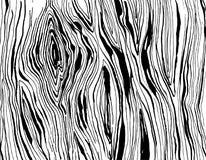 Handdrawnn grungy wooden texture. Black and white. Vector illustration Handdrawnn grungy wooden texture. Black and white Royalty Free Stock Photo