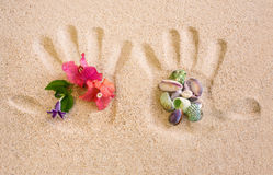 Handdruk op Zand met Bloem en Shells regeling Stock Afbeelding