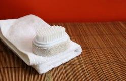 handduk för borstepolermedelbrunnsort royaltyfri fotografi