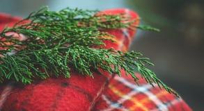 Handduk på träbakgrund med prydliga filialer Nedgångbegrepp Tappningeffekt Förbereda sig för jul royaltyfria bilder