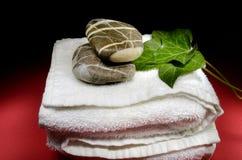 Handduk, stenar och murgrönasidor Royaltyfri Fotografi