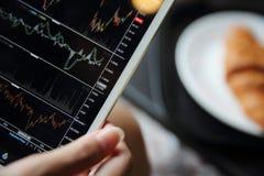 Handel auf der Tablette mit der Geschäftsfrauhand und -hörnchen on-line machen lizenzfreie stockfotos