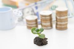 Handel finanziell und Investitionskonzept des Wachsens lizenzfreie stockbilder