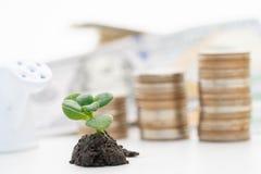 Handel finanziell und Investitionskonzept des Wachsens lizenzfreies stockfoto