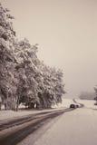 Handeln Sie auf der Straße in den ungünstigen Wetterbedingungen im Winter Stockfoto