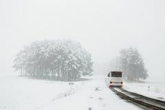 Handeln Sie auf der Straße in den ungünstigen Wetterbedingungen im Winter Lizenzfreie Stockfotos