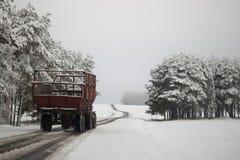 Handeln Sie auf der Straße in den ungünstigen Wetterbedingungen im Winter Lizenzfreies Stockbild