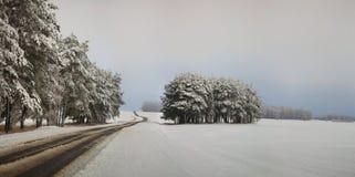 Handeln Sie auf der Straße in den ungünstigen Wetterbedingungen im Winter Stockfotografie