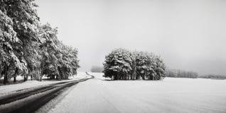Handeln Sie auf der Straße in den ungünstigen Wetterbedingungen im Winter Stockbild